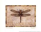 Dragonfly III by Pamela Gladding art print