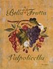 Valpolicella by Pamela Gladding art print