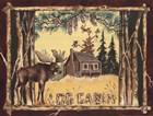Log Cabin Moose by Anita Phillips art print