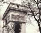 Arc De Triumphe by Judy Mandolf art print