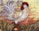 Le Rooster II by Susan Winget art print