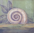 Tranquil Seashells III - Mini by Pamela Gladding art print