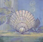 Tranquil Seashells IV - Mini by Pamela Gladding art print