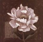 Petal Soft I by Carol Robinson art print