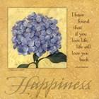Happiness - Hydrangea by Stephanie Marrott art print