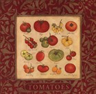 Tomatoes by Stephanie Marrott art print
