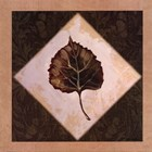 Diamond Leaves III by Catherine Jones art print