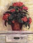 Begonias by Carol Rowan art print