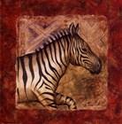 Zebra Safari by Terri Cook art print