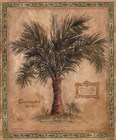 Palm Carpoxylon by Betty Whiteaker art print