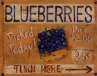 Fruit Stand I by Grace Pullen art print