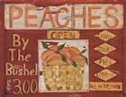Fruit Stand II by Grace Pullen art print