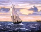 East Wind Sails art print