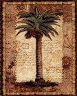 Classic Palm I by Kathleen Denis art print