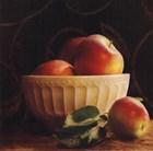 Frutta Del Pranzo I - Special by Amy Melious art print