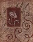 Florescence I by Jane Carroll art print