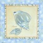 Bubble Bath Shells III by Grace Pullen art print