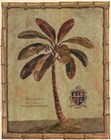 Caribbean Palm IV With Bamboo Border by Betty Whiteaker art print