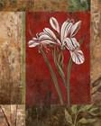 Jeweled Iris II by Maria Donovan art print