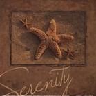Serenity - starfish art print
