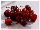Morello Cherries II by Martina Schindler art print