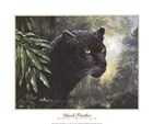 Black Panther by Don Balke art print