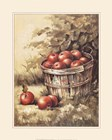 Barrel Apples by Peggy Thatch Sibley art print
