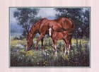 Horse and Foal by Jack Sorenson art print