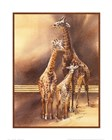 Family of Giraffes by Nancy Azneer art print