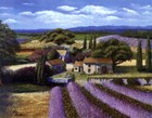 Lavender Fields by Jackie Thompson art print
