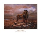 Majestic Lion by S. Duran art print