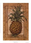 Pineapple Pizzazz by Barbara Mock art print