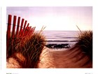 Beach Path by Karl Soderlund art print