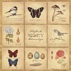 Beauty 9 Patch by Stephanie Marrott art print