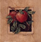 Apple Square by Barbara Mock art print